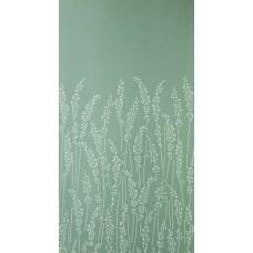 Feather Grass BP 5102