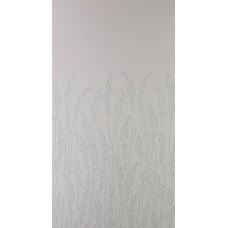 Feather Grass BP 5103