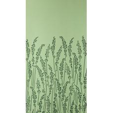Feather Grass BP 5105