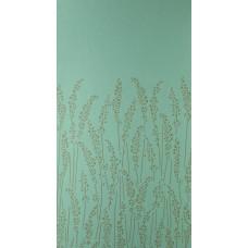 Feather Grass BP 5107
