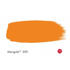 SERENTIS 209 - MARIGOLD 209