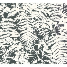Fern - Off Black