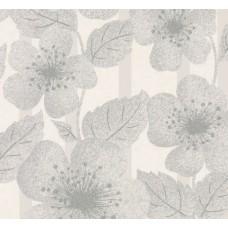 Poppy Flower - Glacier